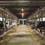 食糧人類-Starving Anonymous- 1巻 ネタバレ感想!【謎だらけの施設・・・で、グロい…】