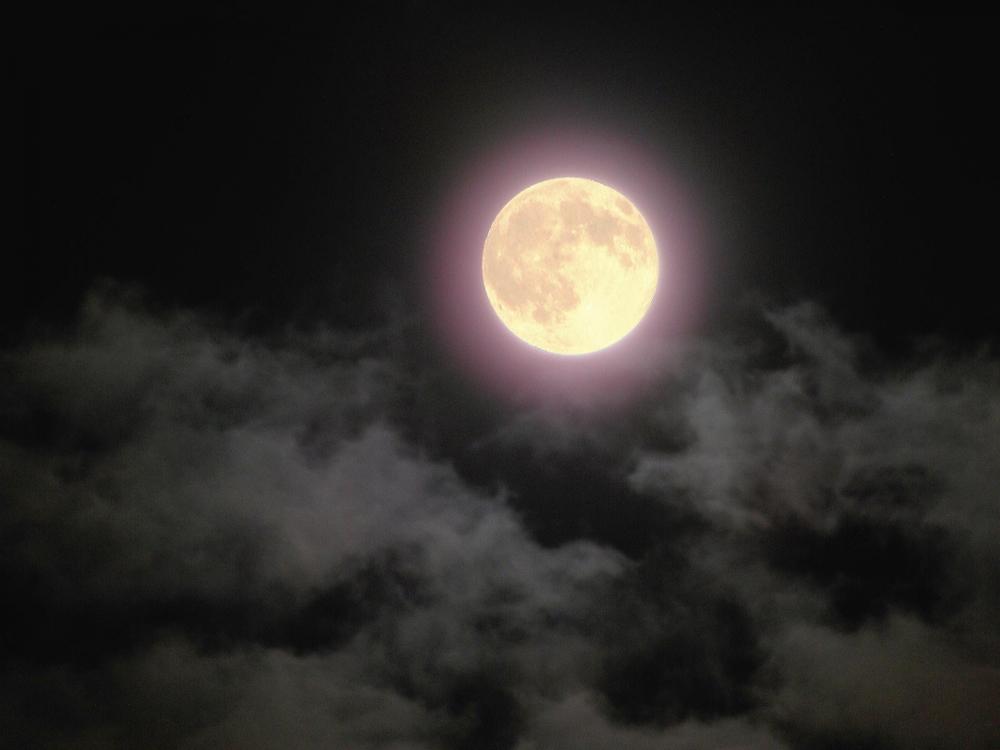 今夜は月が綺麗ですが、とりあえず死ね 3巻 ネタバレ感想!【花園さん、あなたもですか…】