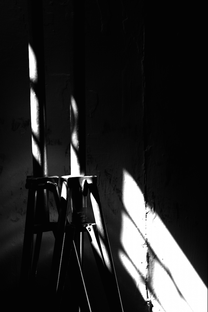 監獄実験―プリズンラボ― 4巻 ネタバレ感想!【犯人はお前だ!】